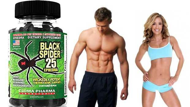 спортивное питание Black spider 25 ephedra Cloma pharma купить, заказать в Киеве и Украине